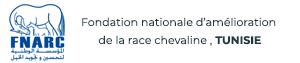 Fondation-nationale-d'amélioration-de-la-race-chevaline
